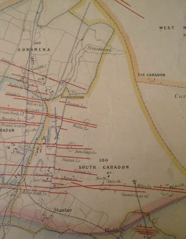 Extract of Brenton Symons' 1863 map showing South Caradon Mine