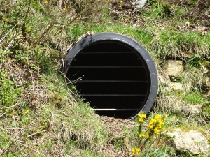 Pipe in the South Caradon Mine main adit
